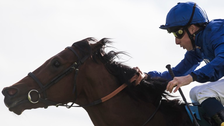 Quorto and William Buick run out convincing winners of the National Stakes