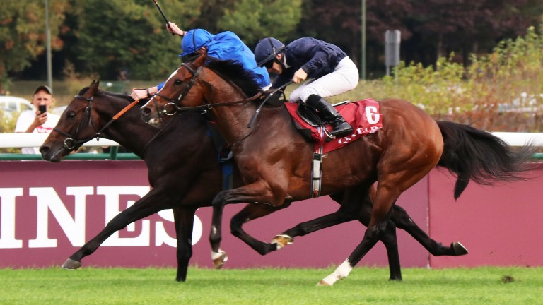 Brundtland and James Doyle (far side) hold off Hunting Horn in the Prix Niel at Longchamp