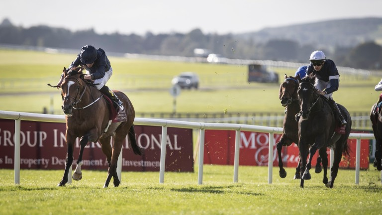 Flag Of Honour is clear of Latrobe (white cap) in the Irish St Leger