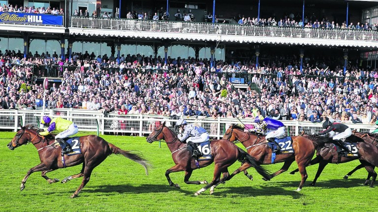 Ayr: The Ayr Gold Cup is this week's feature event