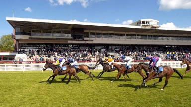 Could a new race series provide a boon for jockeys and trainers?