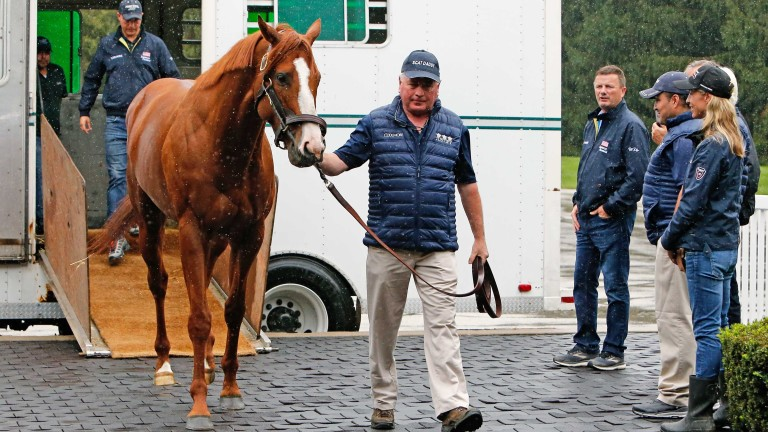 Ashford stallion manager Richard Barry leads Justify off the van as stud manager Dermot Ryan (left of the group on the right) and breeder Tanya Gunther (right), among others, look on