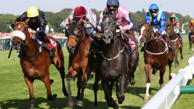 Lingfield headliner: Lethal Lunch (pink colours, right) in winning action at Haydock in June