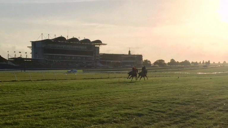 The Rowley Mile: prepped for racing on Thursday