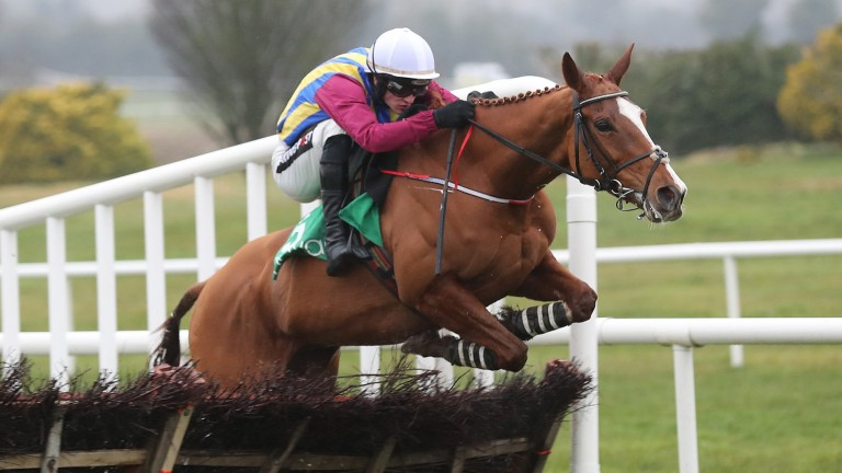 Presenting Mahler reverts to hurdles at Ballinrobe on Friday after a wide margin success over fences at the Listowel Festival last week