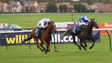 Dolphin Vista (left) gets the better of Morando in the Doonside Cup to justify his long trip north