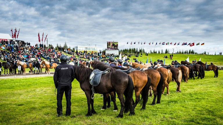 Icelandic riding clubs line up at the opening ceremony of Landsmot. In the foreground are members of the oldest riding club in Iceland, the Fakur Riding Club (established 1922) which hosted the competition on the outskirts of Reykjavik