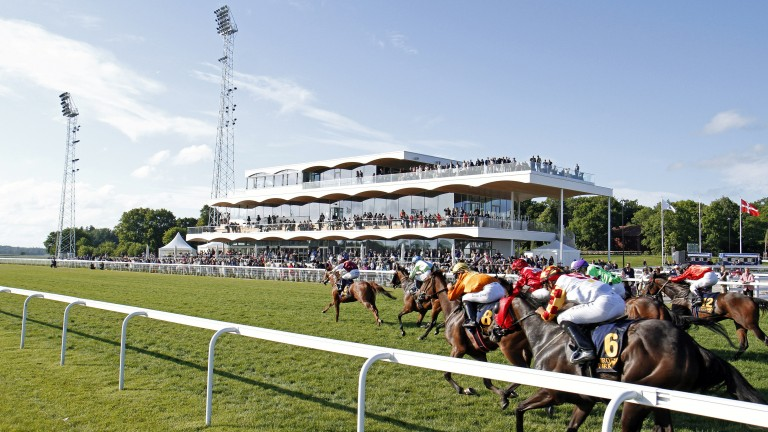 Bro Park: teaming up with Goodwood racecourse