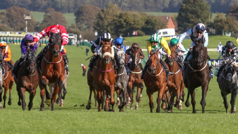Son Of Rest (Chris Hayes, red and white with white cap) and Baron Bolt (Cameron Noble, pink star, navy blue cap) about to dead-heat in the Ayr Gold Cup