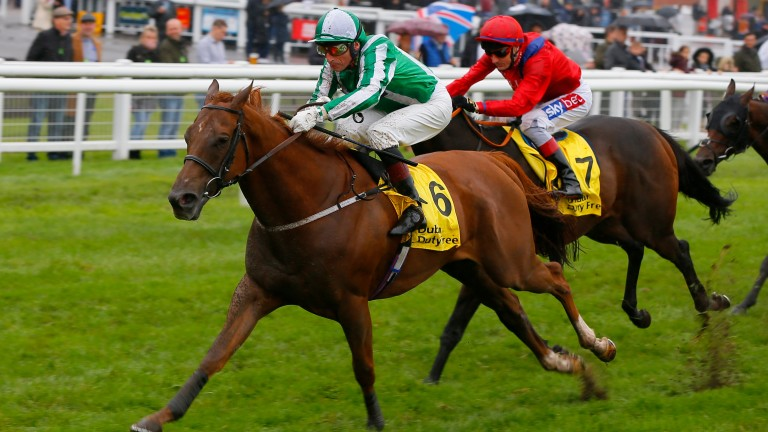Take Cover (red silks) lost nothing in defeat behind Mr Lupton