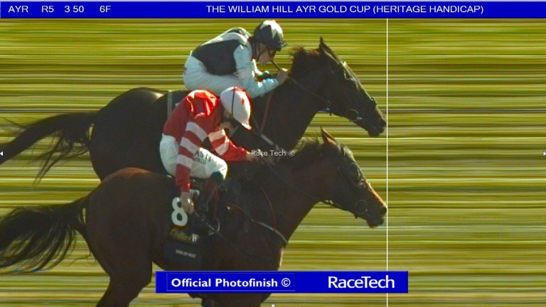 The photo-finish print of the Ayr Gold Cup, in which Son Of Rest (near) and Baron Bolt dead-heated