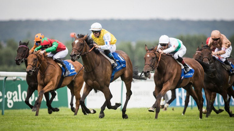 My Sister Nat (red silks, green sleeves) battles Castellar in the closing stages of the Shadwell Prix de la Nonette last month