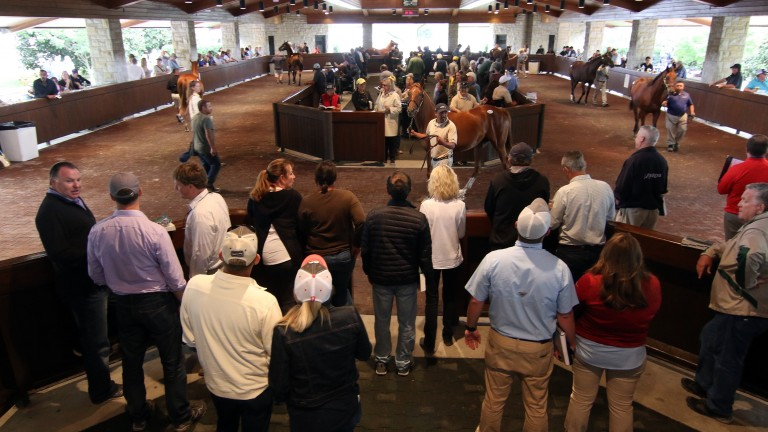 The Keeneland sales parade ring