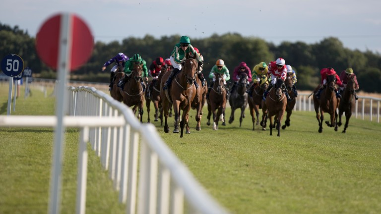Fairyhouse: stage the Listed Blenheim Stakes on Monday