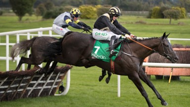 Daybreak Boy: clears the last under Rachael Blackmore on the way to winning the opener at Navan on Sunday