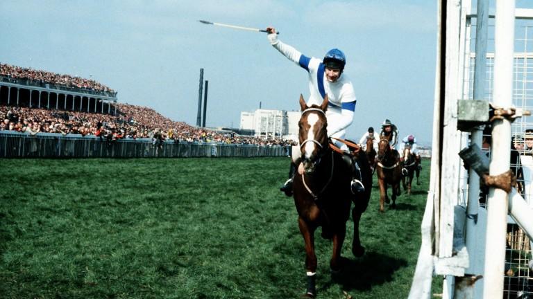 Aldaniti: inspiring winner of the 1981 Grand National