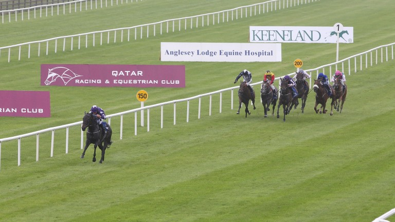 Lady Kaya romps to victory at the Curragh