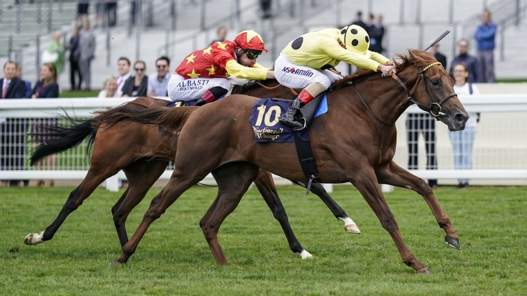 Prince Eiji: out to build on debut win at Ascot