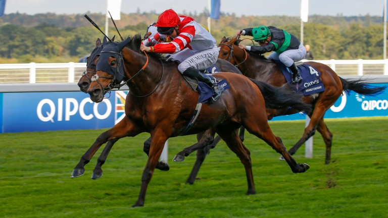 Sheikhzayedroad bids for his first win since this Champions Day success in 2016