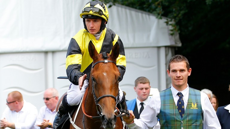 Main Edition: returns to Newmarket for the Group 2 Rockfel Stakes