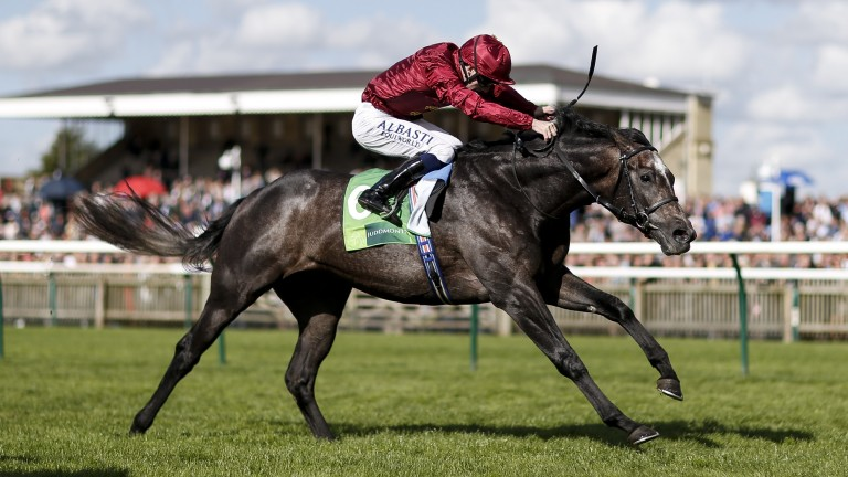 Roaring Lion, one of the stars of 2018, won last year's Royal Lodge Stakes at Newmarket