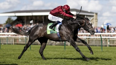 NEWMARKET, ENGLAND - SEPTEMBER 30: Oisin Murphy riding Roaring Lion (R) win The Juddmonte Royal Lodge Stakes at Newmarket racecourse on September 30, 2017 in Newmarket, United Kingdom. (Photo by Alan Crowhurst/Getty Images)