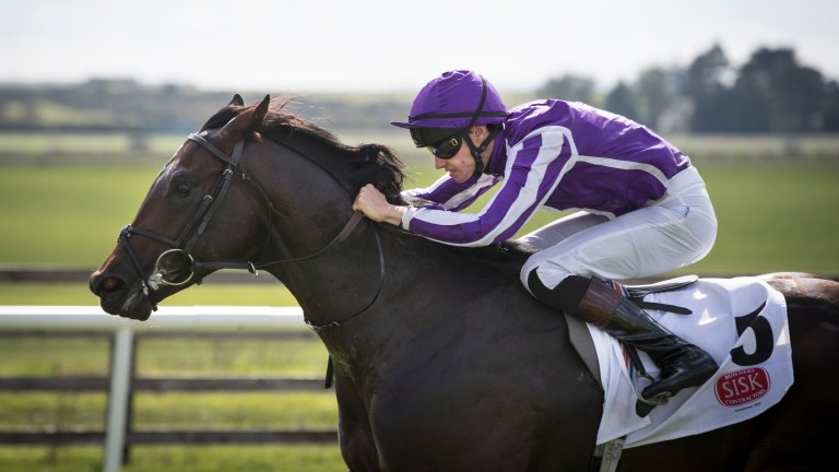 Ten Sovereigns: put his reputation on the in the weekend's juvenile feature, the Group 1 Juddmonte Middle Park Stakes