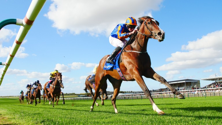Just Wonderful wins the Group 2 Shadwell Rockfel Stakes