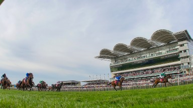 It's Cambridgeshire day at Newmarket, which also hosts the Cheveley Park and the Middle Park Group 1 double bill.