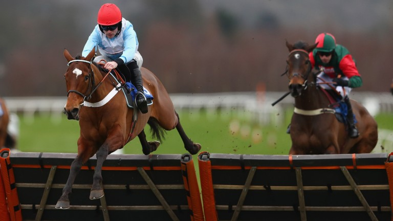 Verdana Blue: makes her Flat debut at Chelmsford this evening