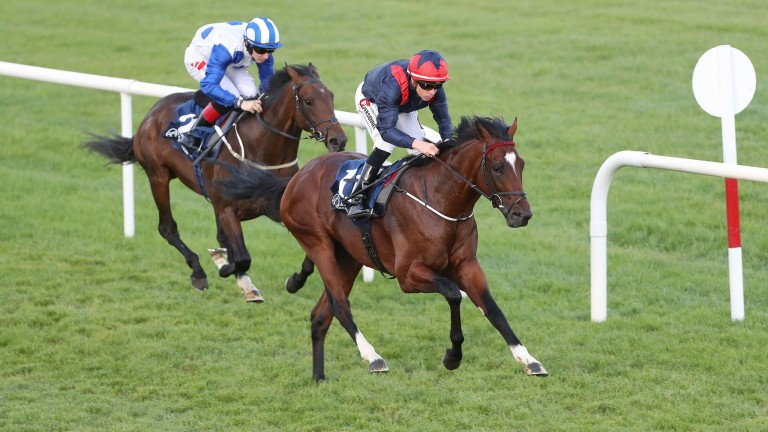 Power Of Now: shed his maiden tag over course and distance