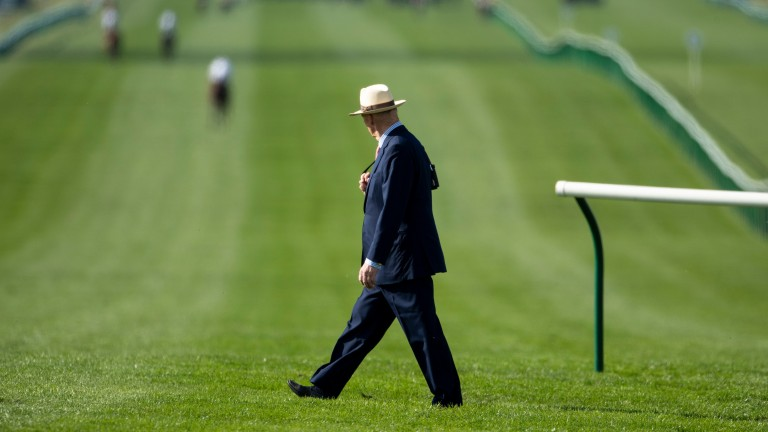 Watching them go down: John Gosden has a beady eye on the fillies as they canter to post ahead of the Cheveley Park Stakes