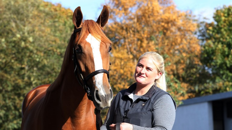 A surefire star of the sale: Glenvale Stud's Galileo sister to multiple Group 1 heroine Alice Springs