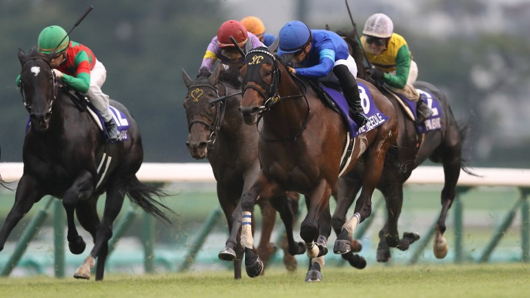 Fine Needle (blue) powers to victory in the Sprinter Stakes
