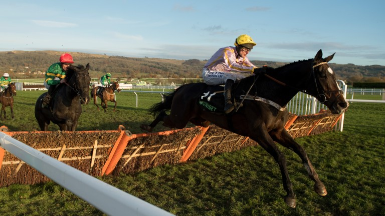Jenkins: could be in action at Warwick on Thursday