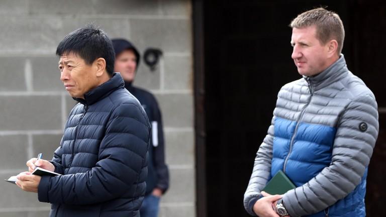 A big supporter of Irish bloodstock, Zhang Yuesheng with BBA Ireland's Michael Donohoe