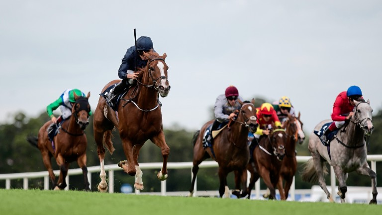 Alice Springs wins the Matron Stakes at Leopardstown