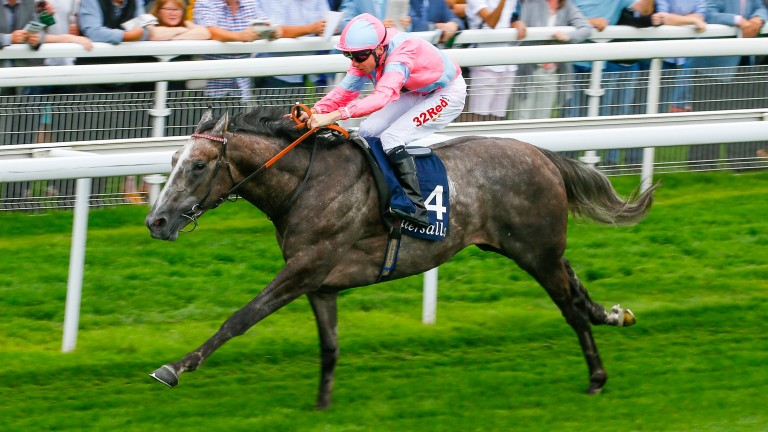 Phoenix Of Spain wins the Tattersalls Acomb Stakes at York