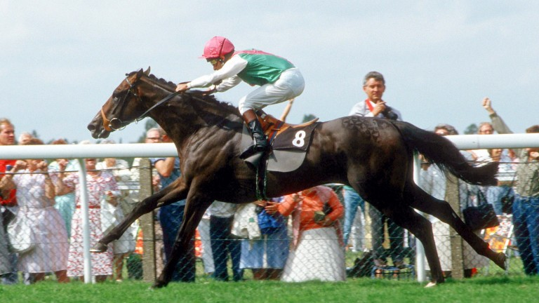 Dancing Brave: the legendary racehorse sired Commander In Chief for Khalid Abdullah