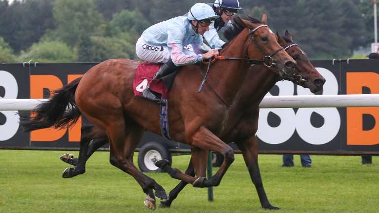 Living up to her name: Improve won at Haydock last time after a decent debut effort