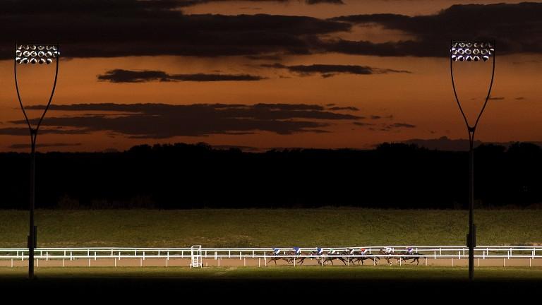 Lacustre runs at Chelmsford
