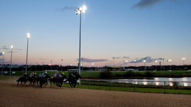 Wolverhampton: eight-race card this evening