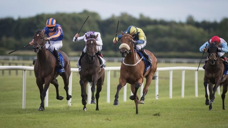 Surrounding (noseband): carries topweight for Mick Halford at Dundalk
