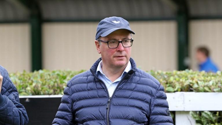 Ballyhane Stud's Joe Foley, who went to ?65,000 for a Bungle Inthejungle colt