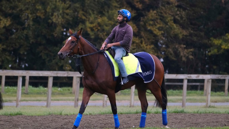 Enable and her lad Imran Shahwani on Warren Hill on Friday