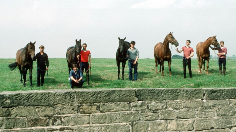 Michael Dickinson (front) with his famous five who filled the first five places in the 1983 Cheltenham Gold Cup: (l to r) Bregawn, Captain John, Wayward Lad, Silver Buck and Ashley House
