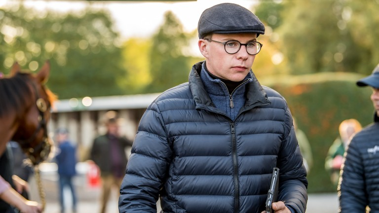 Joseph O'Brien's Master Of Reality missed out on a place in quarantine
