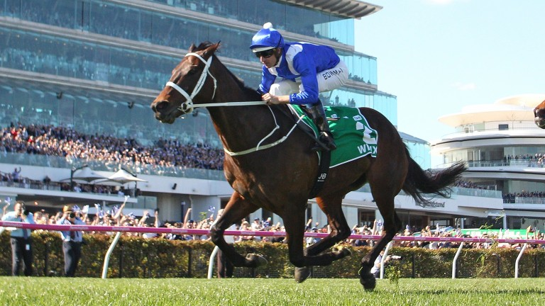 Winx and Hugh Bowman win the Turnbull Stakes at Flemington