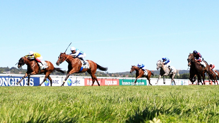 Polydream edges out James Garfield (left) in the Prix Maurice de Gheest. The pair renew rivalry here