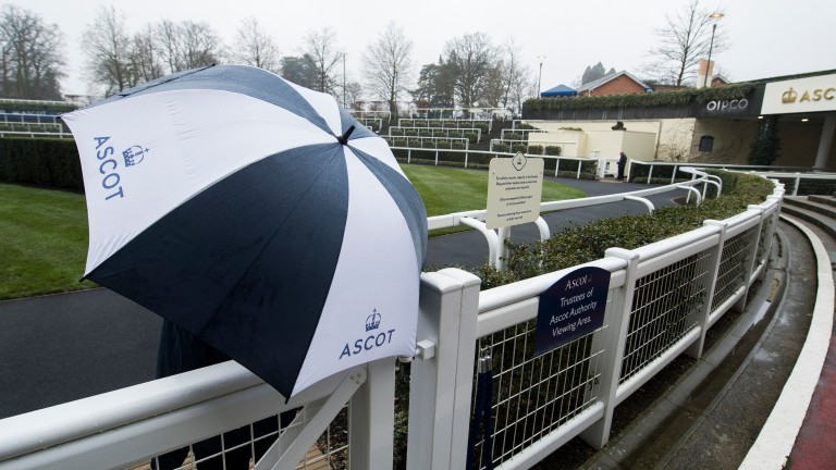 The rain has hit Ascot